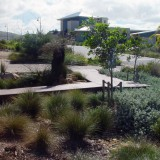 'Beyond Today' is the largest environmental restoration development in South Australia.